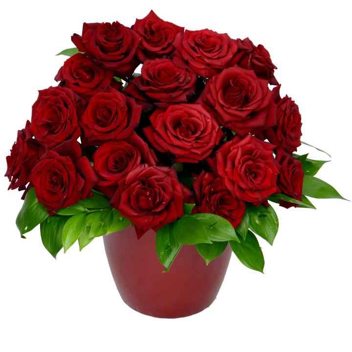 Quality Flowers & Fast Delivery.  Букети и цветна украса, безплатна доставка в София