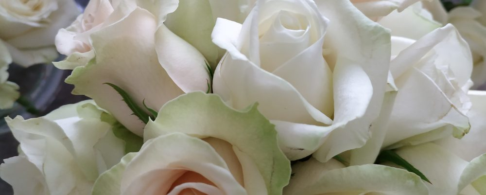Bridel boquet with white roses