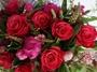 roses 21 May 006