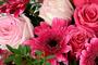 FlowersinSofia.com - букети